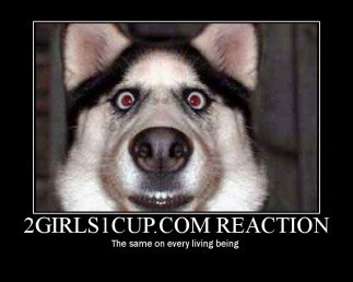 2-girls-one-cup-reaction